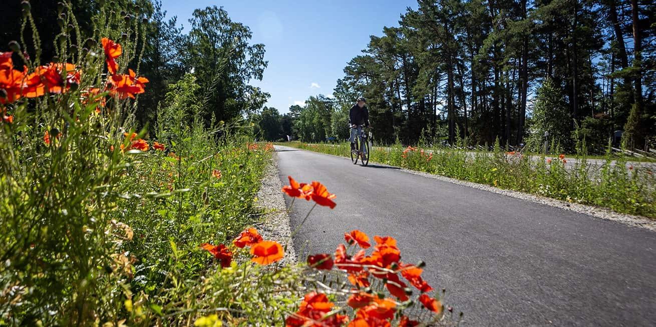 Drömmen om att bo på Gotland